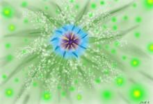 Essence květin